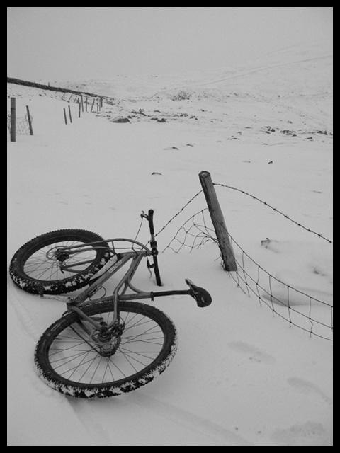 deans-bike-by-dean2
